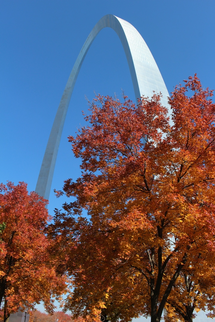 Exploring my new city: St. Louis